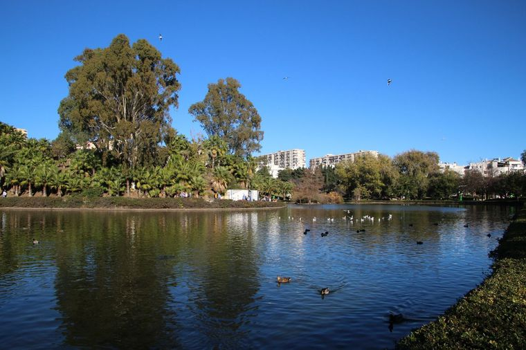 The lake at Paloma Park