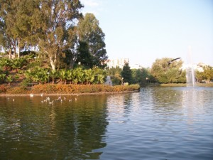 Paloma Park, Benalmadena