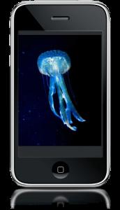 jellyfish app