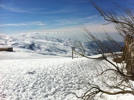 Sierra Nevada Views