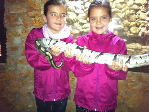 Holding a Python at Zoo de Castellar