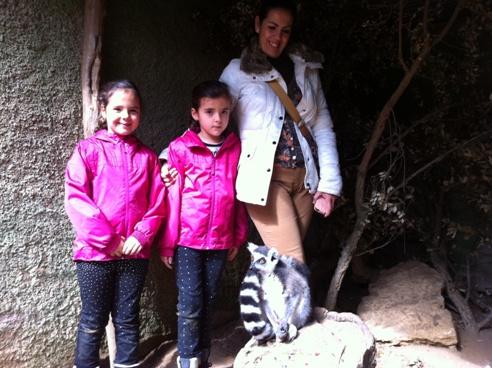 Lemurs in Zoo de Castellar