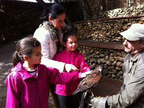touching an eagle at Zoo de Castellar