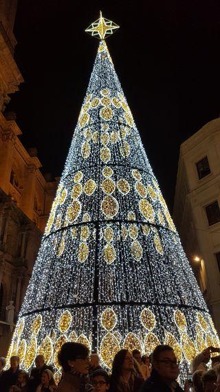Christmas tree in Plaza de la Constitucion